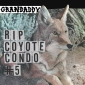 "Grandaddy - ""RIP Coyote Condo #5"" b/w "" ""The Fox in the Snow"" & ""In My Room"" (RSD) 12"" EP"
