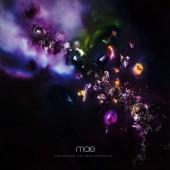 MAE - Multisensory Aesthetic Experience Vinyl LP