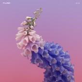 Flume - Skin 2XLP