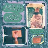 Modest Mouse - Sad Sappy Sucker LP