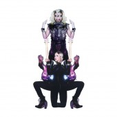 Prince & 3RDEYEGIRL - Plectrumelectrum LP