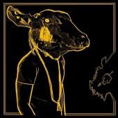 Shakey Graves - Roll The Bones X (Gold & Black Vinyl) 2XLP Vinyl