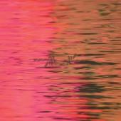 Silverstein - Dead Reflection LP