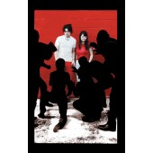 The White Stripes - White Blood Cells Cassette