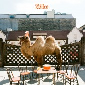 Wilco - Wilco [the album] (Picture Disc) LP