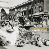 Billy Bragg & Wilco - Mermaid Avenue Vol. II 2XLP