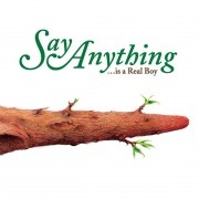 Say Anything - Is A Real Boy 2XLP Vinyl