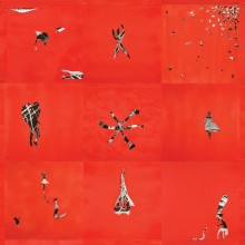 Animal Collective - Hollindagain LP