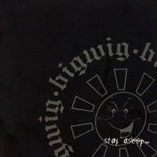 Bigwig - Stay Asleep Vinyl LP