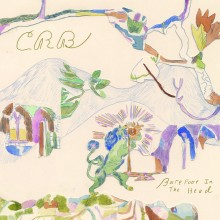 Chris Robinson Brotherhood - Barefoot in the Head LP