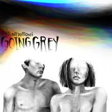 The Front Bottoms - Going Grey Vinyl LP