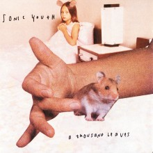 Sonic Youth - A Thousand Leaves 2XLP