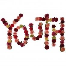 Citizen - Youth LP